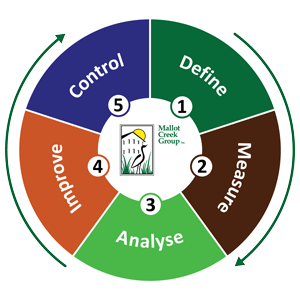 DMAIC wheel